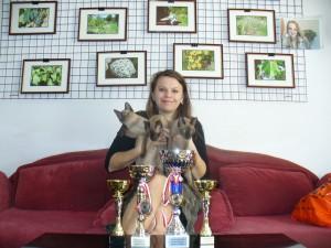 reward our purebred cats
